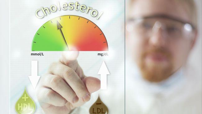 Image result for kolesterol terlalu rendah