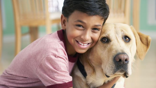 Situs Kencan Untuk Temukan Kecocokan Manusia dan Anjing
